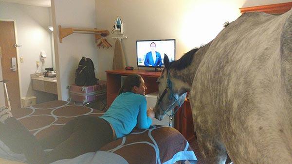สาวลองใจถามโรงแรม ให้ม้าคู่ใจเข้าพักด้วยได้ไหม ก่อนได้คำตอบสุดเซอร์ไพรส์ !!?